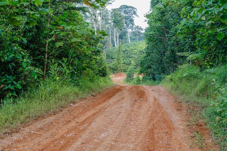 Red jungle road, Costa Rica | © GO4PIXEL/Shutterstock