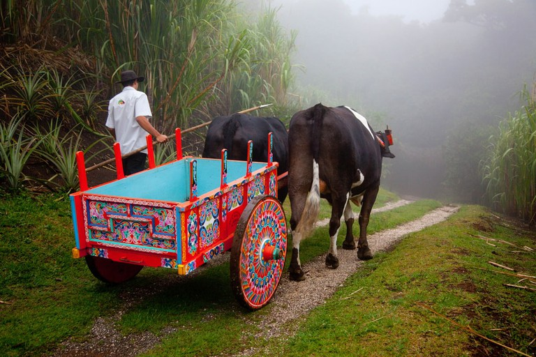 Colorfull Costa Rican Ox Cart