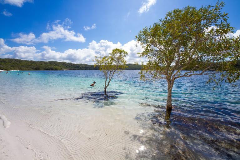 Fraser Island, Lake Mckenzie, Australia
