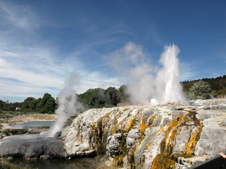 Geothermal Geyser Rotorua, New Zealand