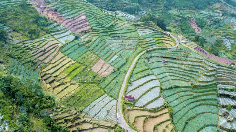 Beautiful aerial view of Dieng Plateau farmland with road and terraced system