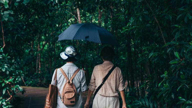 Singapore Pulau Ubin Umbrella