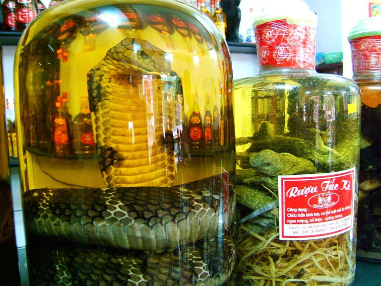 Snake wine Hong Kong 2