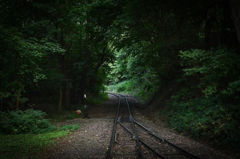 The forest railway at Szilvásvárad