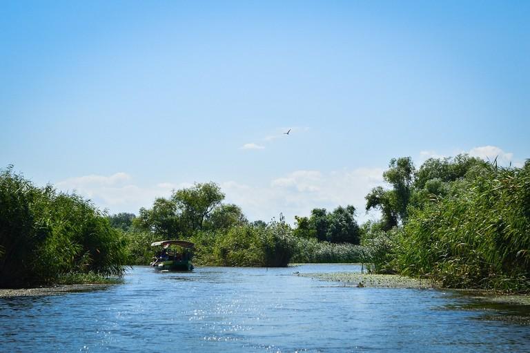 The Lake Tisza