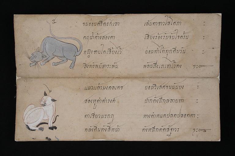 1024px-Wichienmaat_Thai_cat