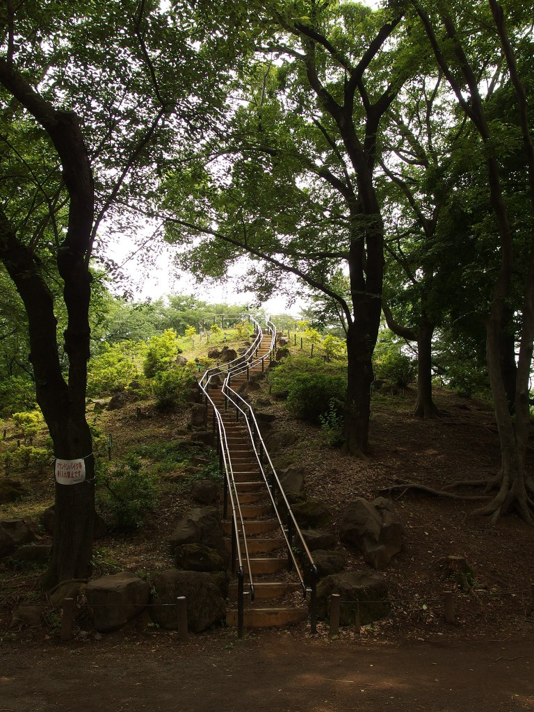 Stairs to the top of Hakone Yama