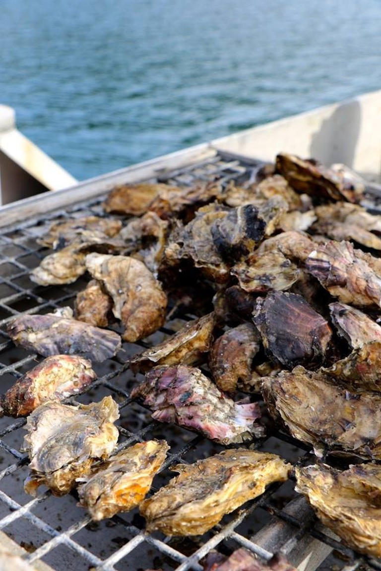 Oysters are raised in Homer's Kachemak Bay