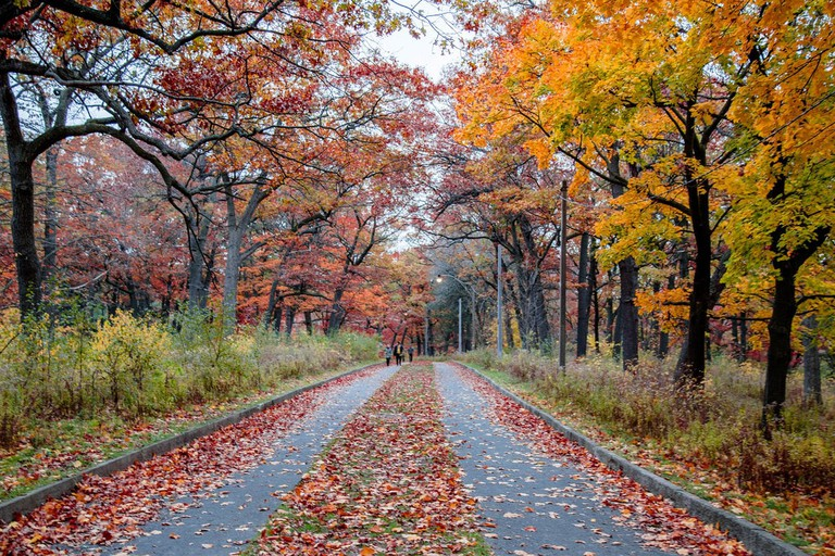 The Best Time of Year to Visit Toronto