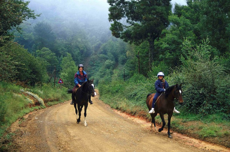 Horse riding in Hogsback
