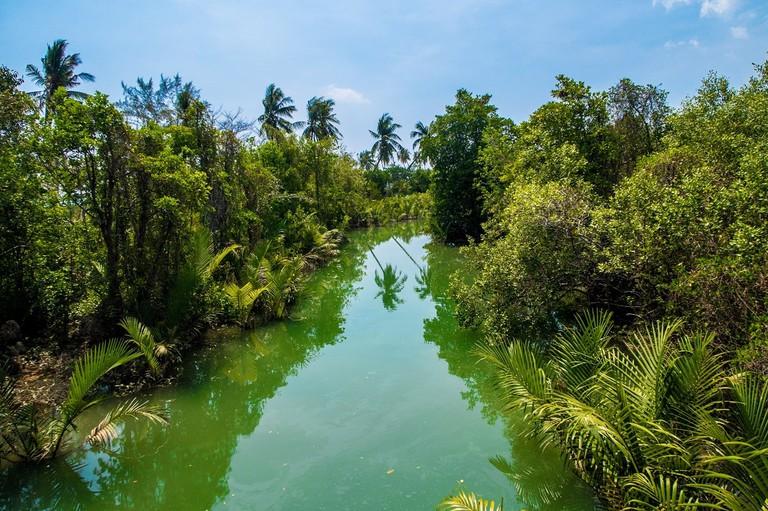 Koh Lanta river