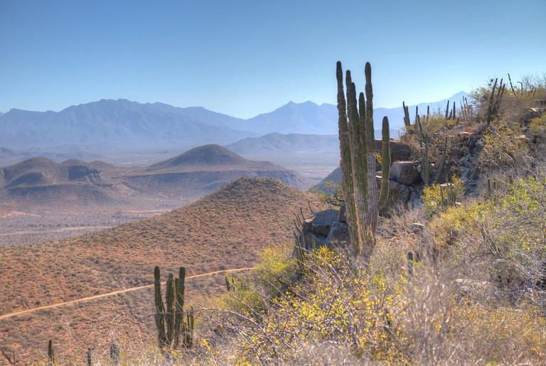 northern mexico
