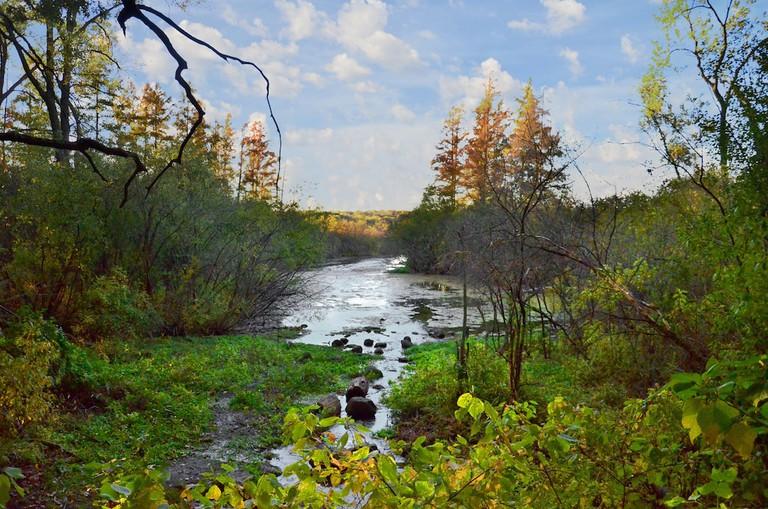University of Wisconsin – Madison Arboretum | © Richard Hurd / Flickr