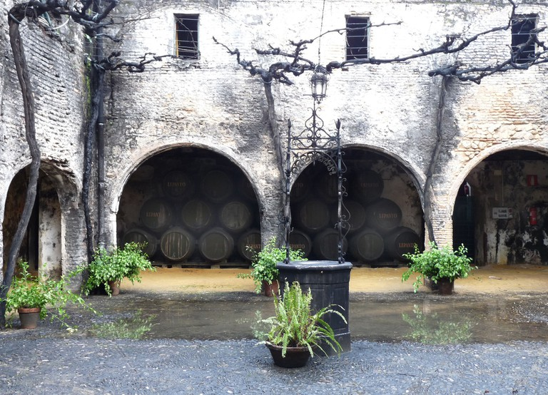 Old whiskey barrels in the Tio Pepe cellars