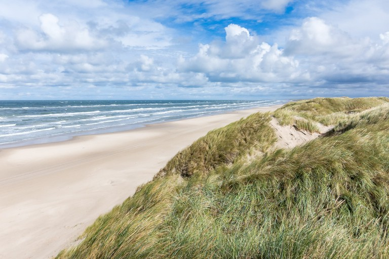 beach-landscape-sea-coast-grass-sand
