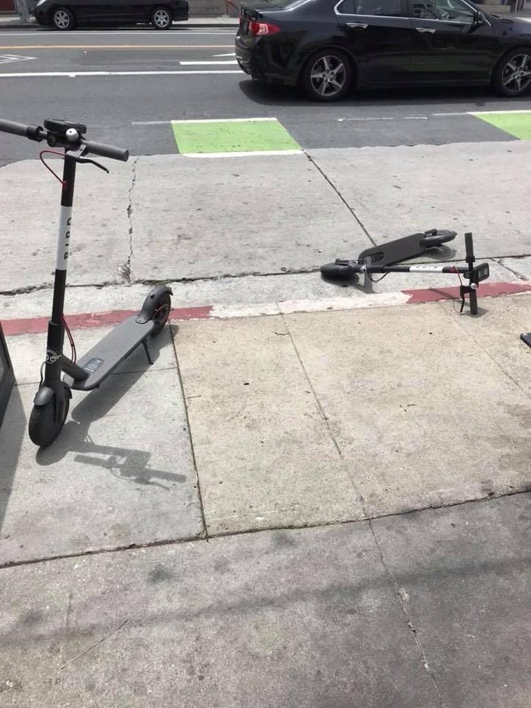 birdscooters1