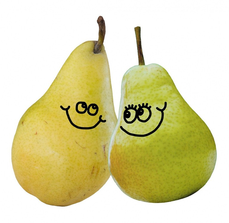 Cartoon Love Pair Pears Pear Couple Food Fruit