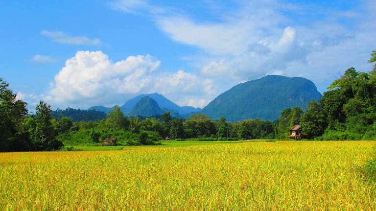 Lao Countryside