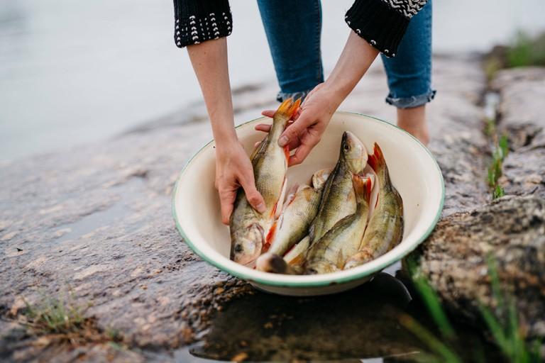 Fish as Finnish summer food.