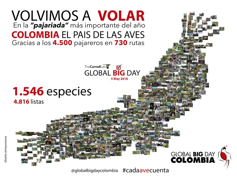 This beautiful graphic, made up of 550 photos of Colombian birders, celebrates Colombia's victory