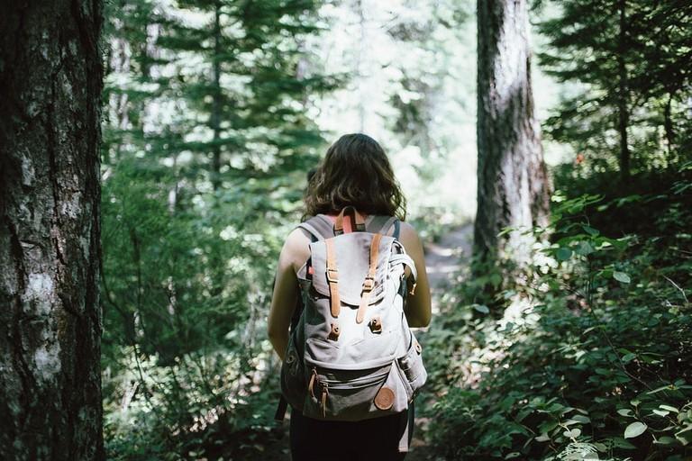https://pixabay.com/en/hiker-backpacker-hiking-woods-918704/