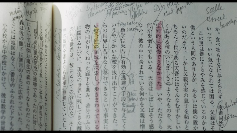 japansketegn