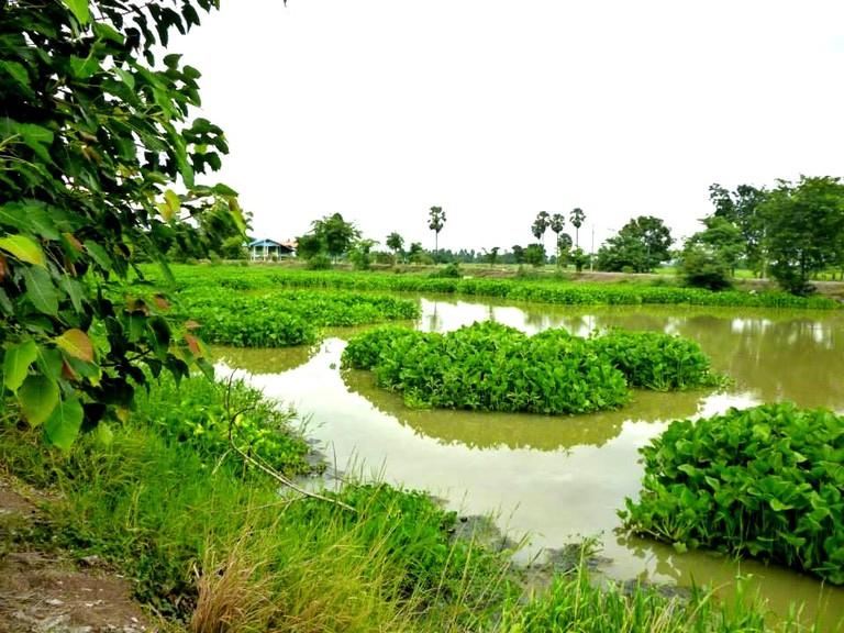 Scenery at Mae La Maha Rachanuson Park