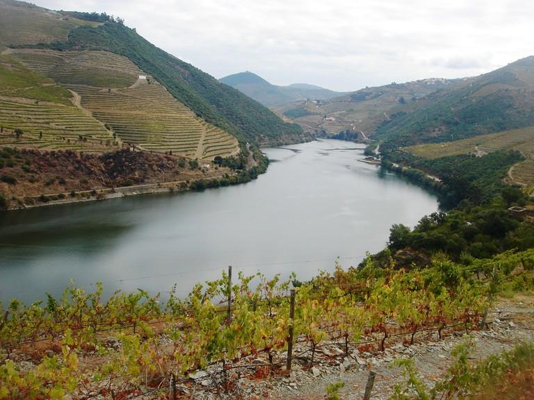 river-douro-838765_1280