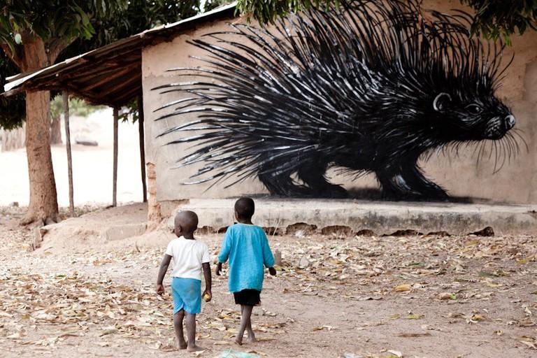 roa_street_art_gambia_10-Jonx-Pillemer