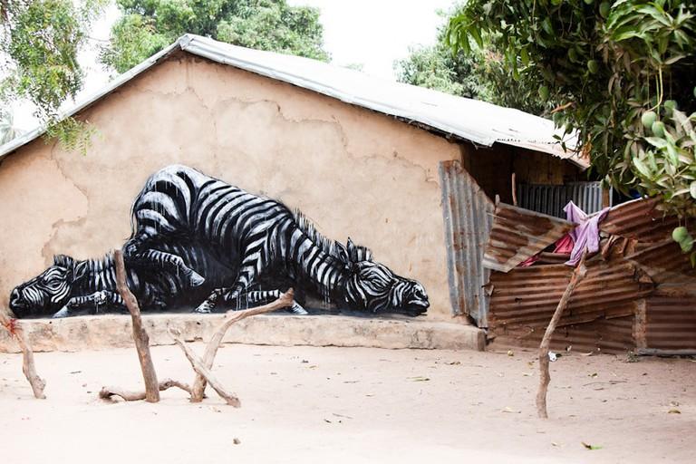 roa_street_art_gambia_13-Jonx-Pillemer