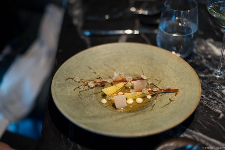 Scallops from Frøya grilled in their own shell, winter apples and celeriac at Maaemo