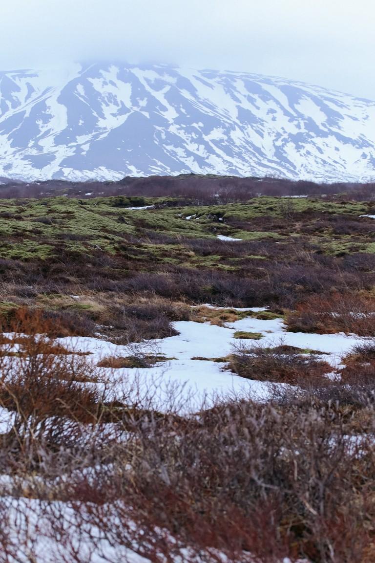 Pingvellir National Park-Iceland Golden Circle Tour-Iceland