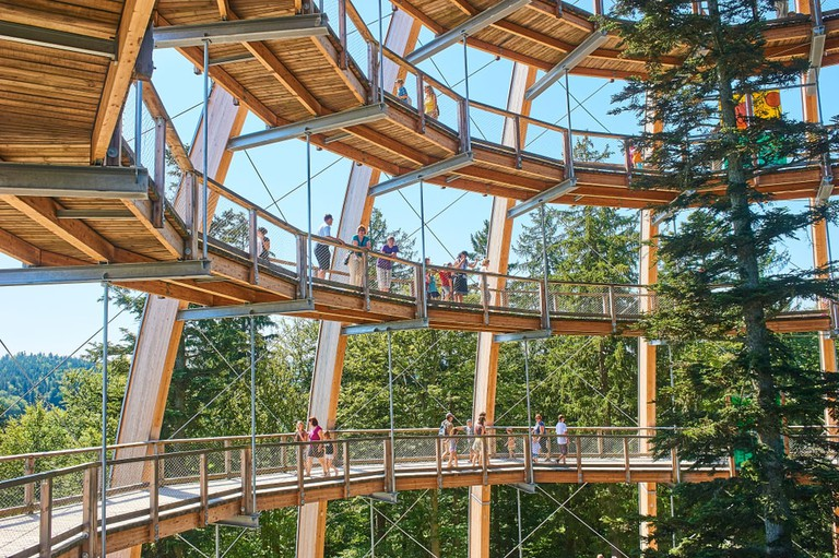 Baumwipfelpfad Treetop walk tower in Bavarian Forest, Germany