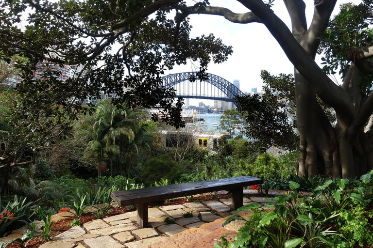 Harbour Bridge view from Wendy's Secret Garden