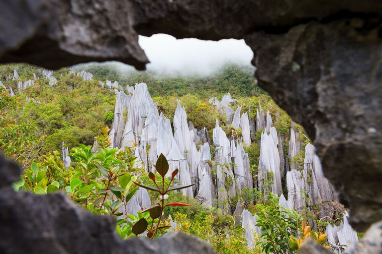 Limestone pinnacles formation at Gunung Mulu national park, Borneo, Malaysia