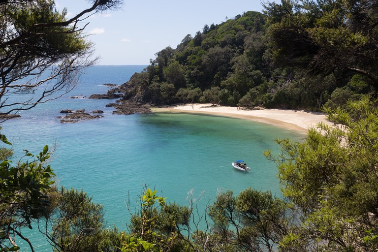 Whale Bay, New Zealand