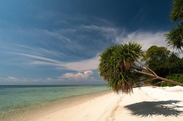 Beach at Lankayan Island, Borneo