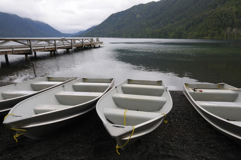 Row boats at dock, Lake Crescent, Washington, USA