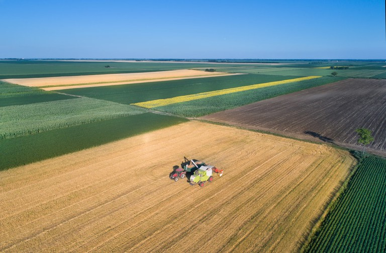 Combine harvester sews wheat grain in the fields of Sombor city, Serbia