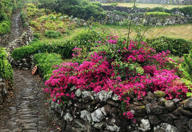 Flores Island, Azores
