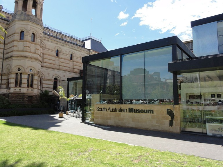 South Australian Museum © David Hearle / Wikimedia Commons