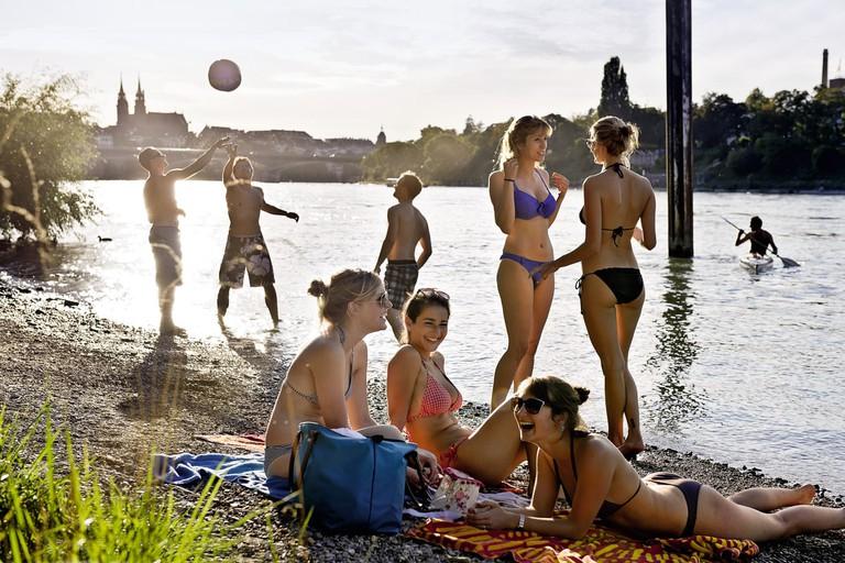 Summer by the Rhine
