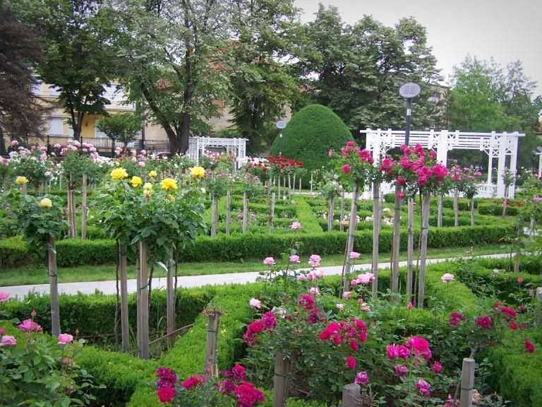 The Roses Park in Timisoara
