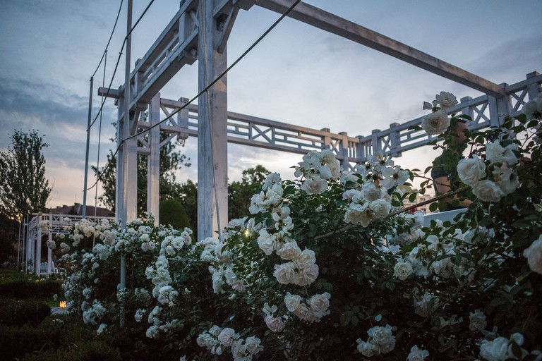 White wooden canopies and hanging roses