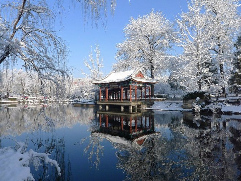 Winter_in_Peking_University_Winter_in_2013