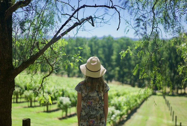 Yarra Warren Estate in the Yarra Valley © Marcus Hansson / Flickr