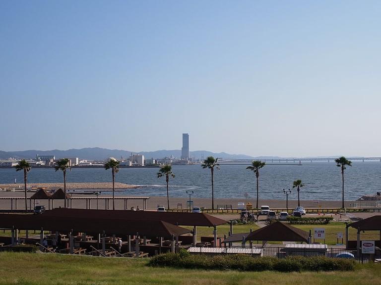 海浜緑地見晴らしの丘
