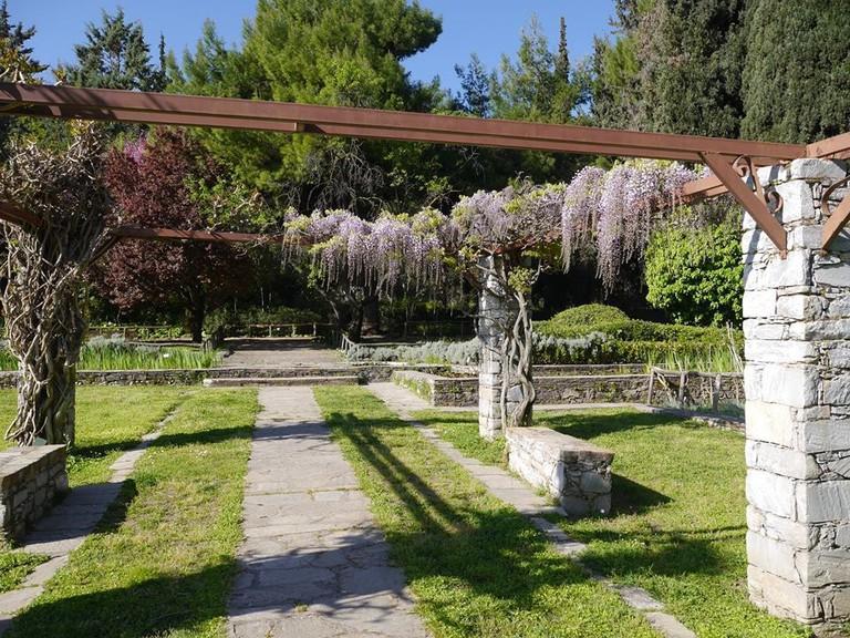 Julia & Alexander N. Diomedes Botanical Garden