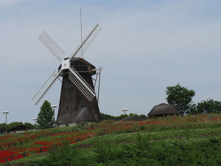 The windmill on the hill.