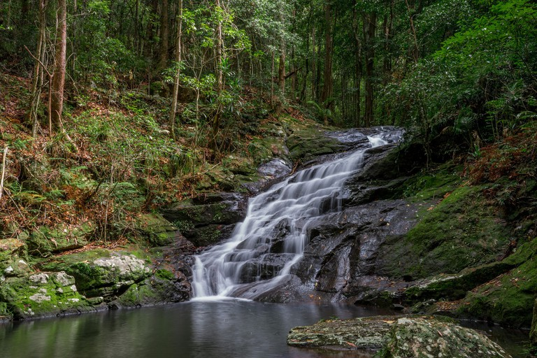 Picnic Creek in Kondalilla National Park